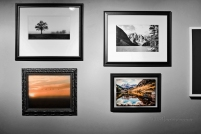 Images as finalists in the contest.